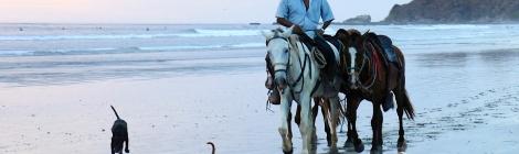 Horseback Rider at Sunset