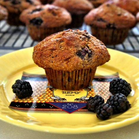 Blackberry Bran Muffin